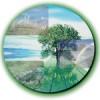 Las Pymes Recibiran Asesoramiento En Material Medioambiental Y Energetico