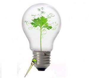 Pymes y medio ambiente