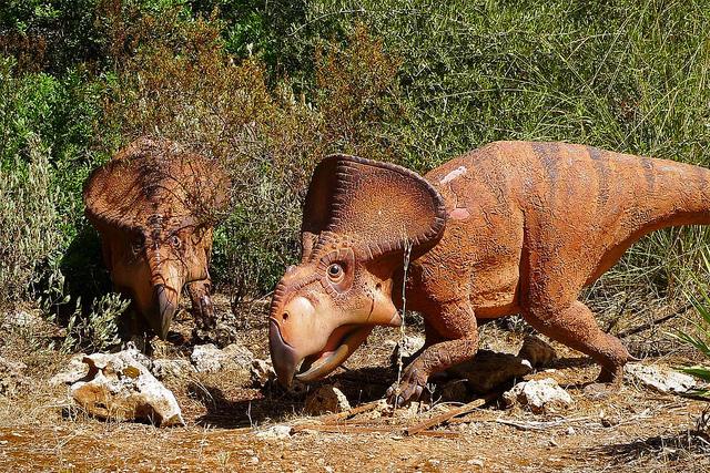Cómo evitar que tu pyme se extinga como un dinosaurio