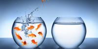 Los cinco miedos que debes evitar al emprender